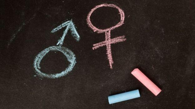 gender_studies